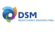 台湾DSM